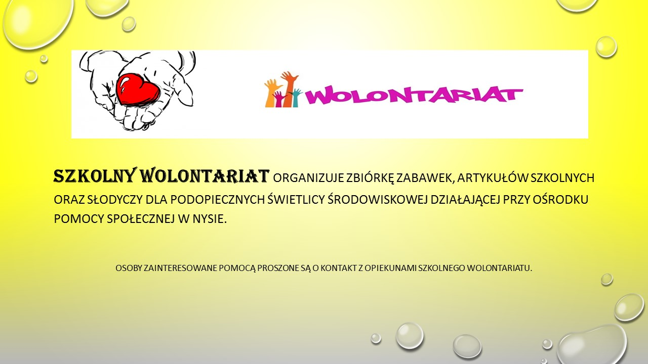 wolontariat 171